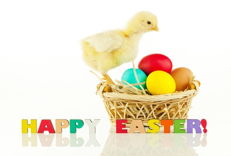 Basket with the Easter eggs and small chicken against white background Stock Photo - 13145504