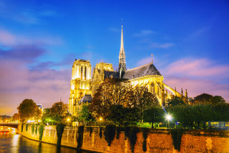 dame: Notre Dame de Paris cathedral at night Stock Photo