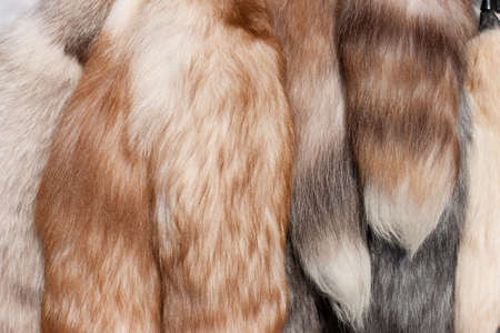 Polar fox fur tails closeup Stock Photo - 6912585