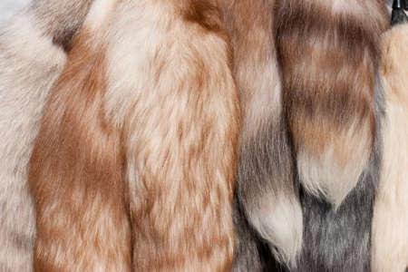 Polar fox fur tails closeup Stock Photo - 6912585