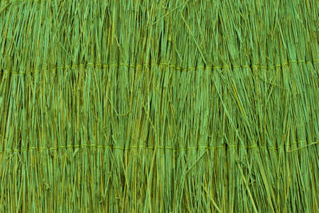 canne: Tappezzeria trama verde canna