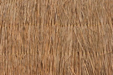 rietkraag: Stro textuur behang