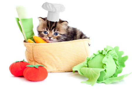 british foods: smiling cook kitten with toy vegetables isolated Stock Photo