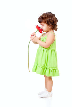 smells: little girl smells African daisy flower in studio isolated