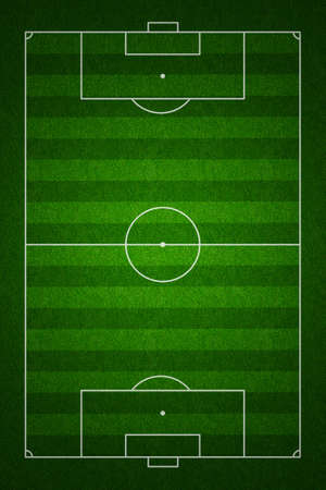ball field: Soccer or football field or pitch top view with proper markings and proportions according standards