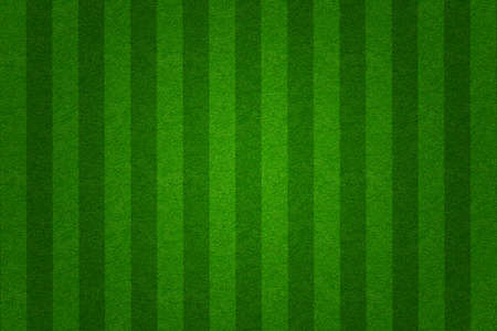 green grass soccer  field background Stock Photo - 12017021