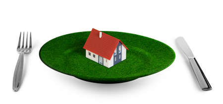 small house concept  on grass plate photo