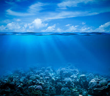 Underwater coral reef seabed view with horizon and water surface split by waterline Stockfoto