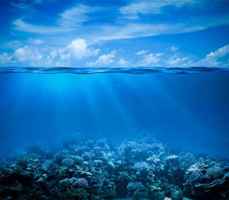 arrecife: Vista submarina del arrecife de coral marino con horizonte superficial y el agua dividido por la línea de flotación