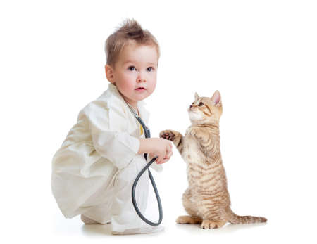 kid or child playing doctor with stethoscope and cat isolated on white photo