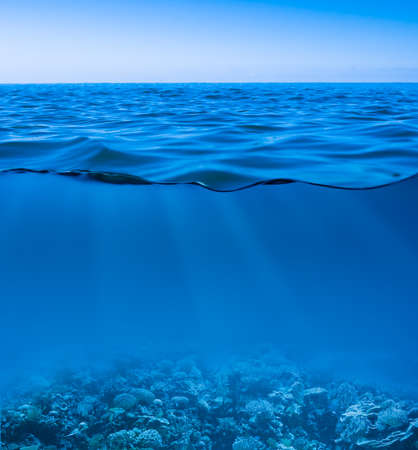 seabed: still calm sea water surface with clear sky  and underwater world discovered