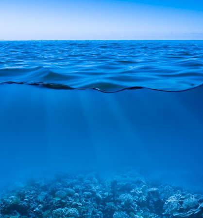 corales marinos: superficie de agua de mar todav�a tranquilo con el cielo claro y el mundo submarino descubierto