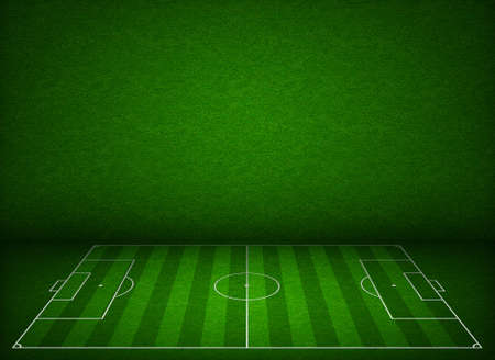 soccer pitch: Soccer or football field or pitch side view with proper markings and proportions according standards