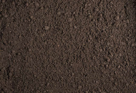 cultivated land: Soil texture background