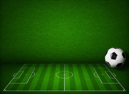 touchline: Soccer or football field or pitch side view with ball