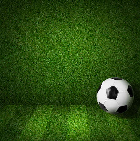 Soccer or football playing field side view with ball Stock Photo - 19377647