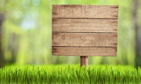 夏の森、公園、庭の木の看板