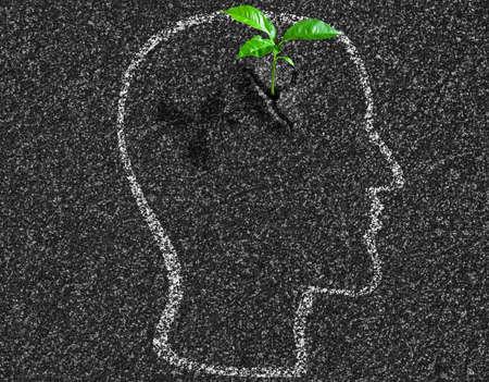 idea young growth inside of human head contour on asphalt concept Stock Photo - 21026173