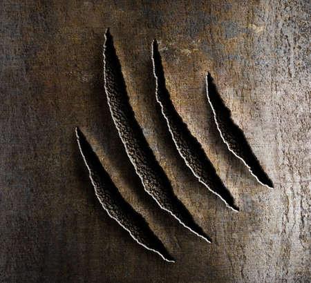 さびた金属の爪の損傷