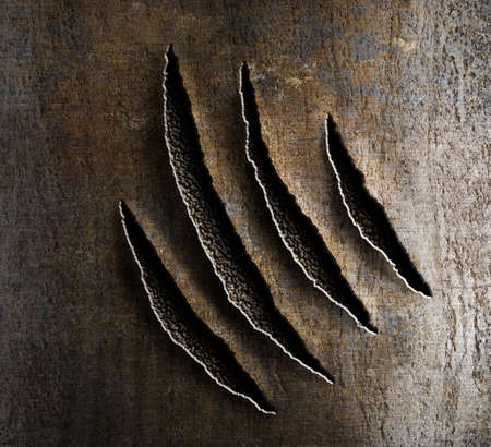 kratzspuren: Klauen Schaden auf rostiges Metall