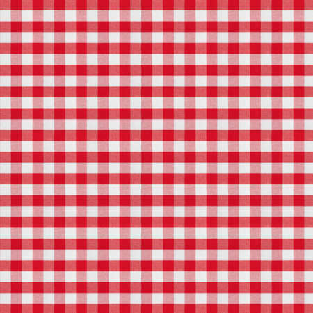 red checkered fabric tablecloth Stock Photo - 22861109