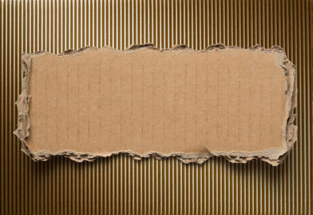 natural paper: Torn cardboard background