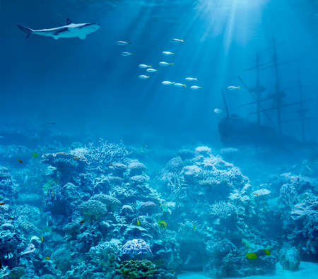 Sea or ocean underwater with shark and sunk treasures ship photo