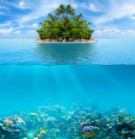 Underwater coral reef seabed and water surface with tropical island