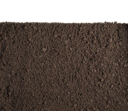 Soil or dirt section isolated on white background photo