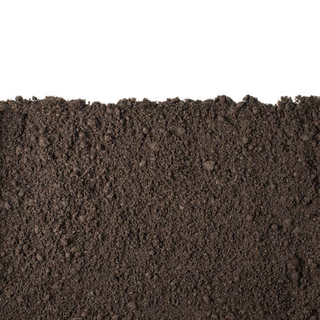 cross cut: Soil or dirt section isolated on white background