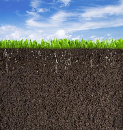 soil: Sezione del terreno o la sporcizia con erba sotto il cielo