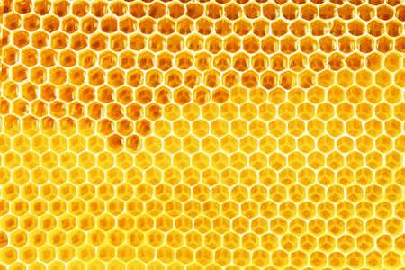 ハニカムのバック グラウンドで自然な蜂蜜 写真素材