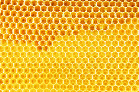 apiculture: natural bee honey in honeycomb background Stock Photo