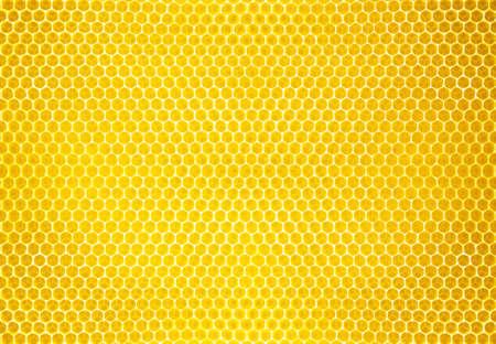 honey comb background or texture Standard-Bild