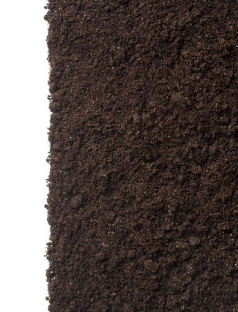 dirt background: vertical soil or dirt section isolated on white background Stock Photo