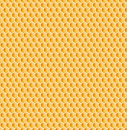honey comb: honeycomb or bee honey comb seamless background Stock Photo