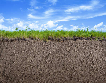 Soil ground, grass and sky nature background