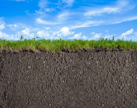 soil: Soil or ground, grass and sky natural background