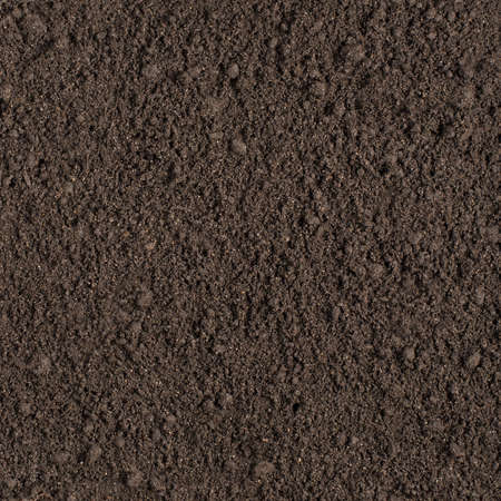 Wet soil seamless square texture