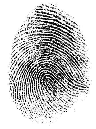 fingerprint vector illustration Illustration