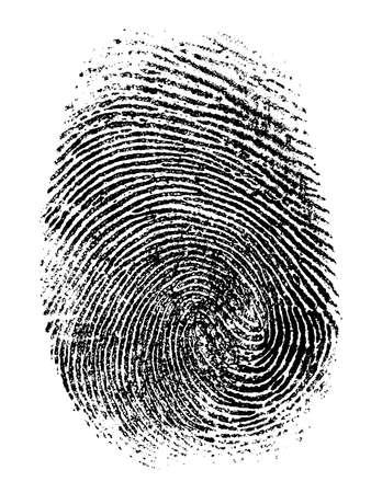 theft proof: Fingerprint isolated on white illustration.
