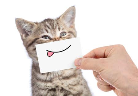 Katze mit lustigem Zungenlächeln isoliert auf weiß