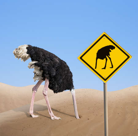 ostrich with head hidden in sand with traffic sign Stock Photo