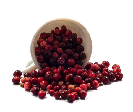 white mug and spilled on the table cranberries photo
