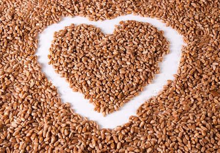 wheat grains photo