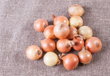 golden section: bunch of onions on a linen fabric background