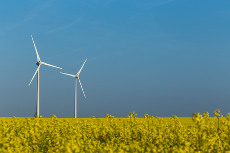 generators: Two wind turbine generators in the yellow rapeseed field under the blue sky Stock Photo