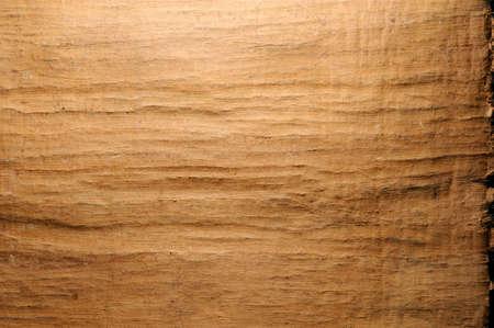 papyrus: Papyrus structure