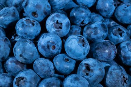 Detail of Blueberries. Macro trucking shot. Top view. Bog bilberry, bog blueberry, northern bilberry or western blueberry (Vaccinium uliginosum) Reklamní fotografie