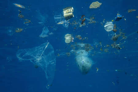 Plastic and other debris floats underwater in blue water. Plastic garbage polluting seas and ocean